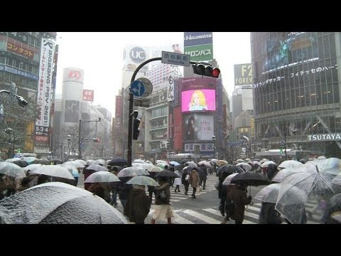 Transport chaos as heavy snow hits Tokyo
