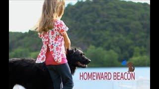 Homeward Beacon: A Bluetooth pet tag helping lost pets home