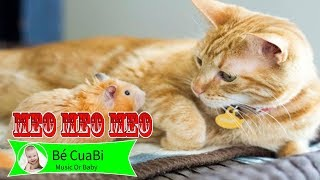 Chú Chuột Nhắt 💙 Meo Meo Meo Rửa Mặt Như Mèo 💙Nhạc Thiếu Nhi Mèo Con Cho Bé