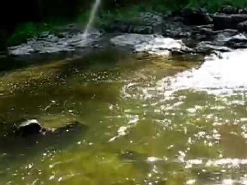красноярск рыбная ловля  получай каче