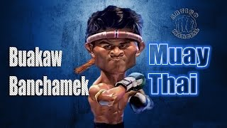 👊Training Destroyer Buakaw Banchamek