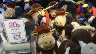 Winning On The Early Man E-Claw Machine In The Arcades