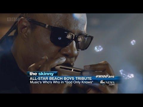 SKINNY: All-Star Beach Boys Tribute