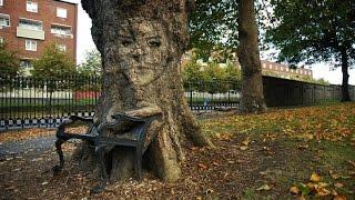 Ghép ảnh khuôn mặt vào thân cây với Photoshop