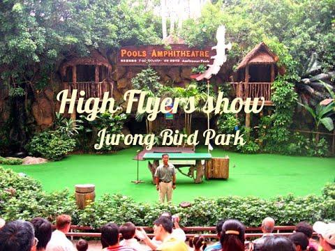 High Flyers Show At Jurong Bird Park , Singapore
