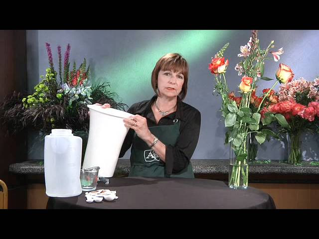 Care of Fresh Flowers - GWC Floral Design with Gail Call AIFD