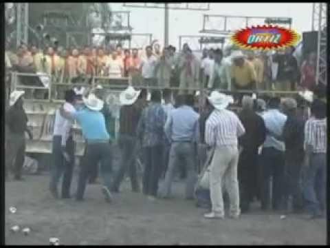 SONES CON BANDA - PLEITO EN EL JARIPEO