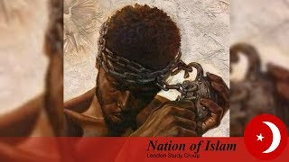 Video: Understand the 9/11 lies. The Black Man needs to wake up! - Leo Muhammad (NOI)
