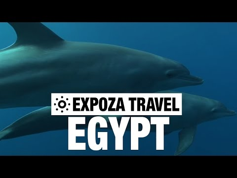 El Quseir el Quadim (Egypt) Vacation Travel Video Guide