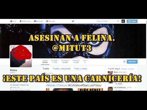 #ALERTA Asesinan a compañera twittera en Reynosa. #Reynosafollow  ¡Este país es una carnicería!