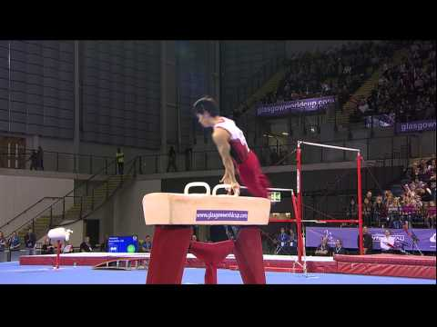 Kazuhito Tanaka (JPN) Pommel Horse