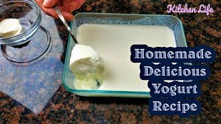 Homemade Delicious Yogurt Recipe only in 7 hours - Curd Dahi Easy Recipe - Ramadan / Iftar Special