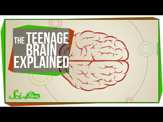 Play this video The Teenage Brain Explained
