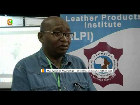 Africa Leather Industry