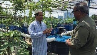 Rooftop farming (EPS 16) ছাদ কৃষি