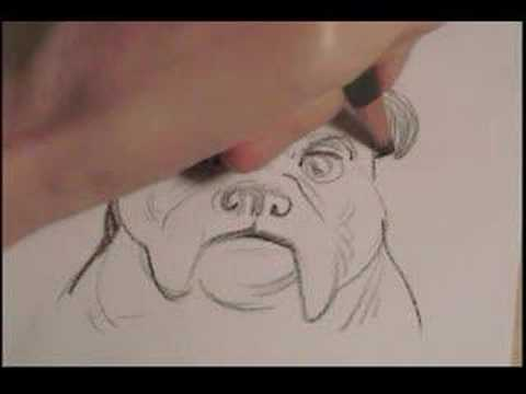 Pencil Bulldog