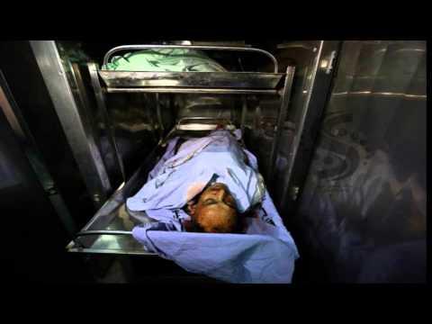 Gaza Casualties of War 2014 (Graphic)