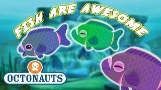 Octonauts - Fish Are Awesome   Aquatic Fun   Cartoons for Kids   Underwater Sea Education