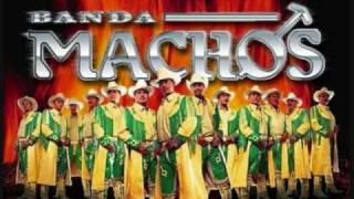 Watch Banda Machos Un Indio Quiere Llorar video