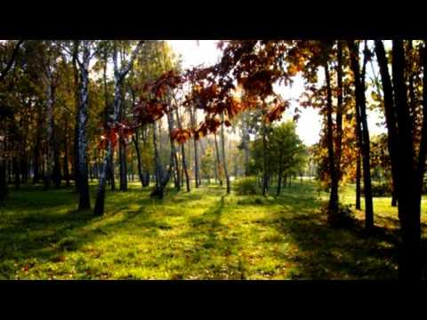 Ніна Матвієнко - Сміються, плачуть солов'ї