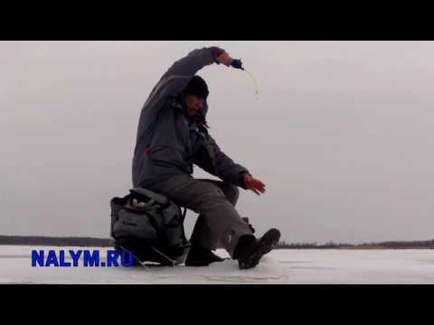 клуб активной рыбалки налим рыбинка новости