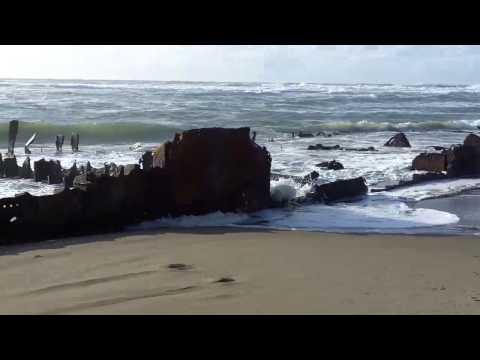 Shipwreck on the Oregon Coast - Sujameco