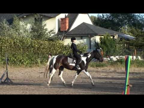 moja jazda konna – uczę się skakać