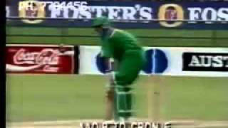 pak vs south africa 1992 world cup
