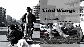 "Ethiopian Short Film ""Tied Wings""
