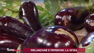 Melanzane e peperoni: la sfida - TuttoChiaro 04/09/2019
