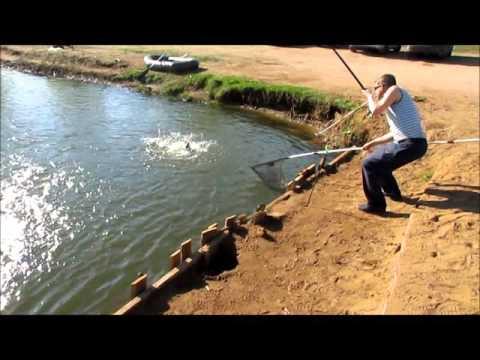 рыбалка без границ коргашино