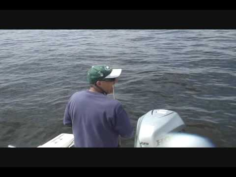 Raritan Bay Fishing may 22nd Part Two