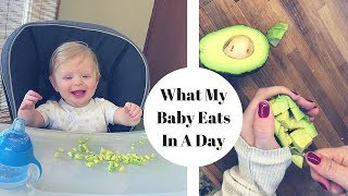 WHAT MY BABY EATS IN A DAY! | 8 Month Old Schedule