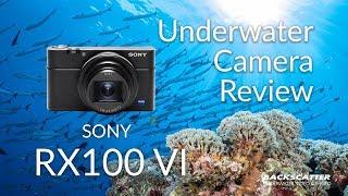 Sony RX100 VI Underwater Camera Review