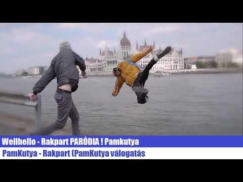 Wellhello - Rakpart PARÓDIA ! Pamkutya (Offical Audio)
