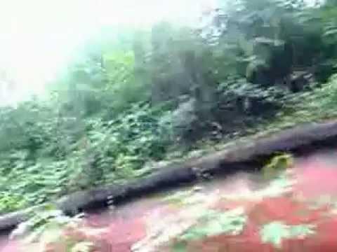 Longest Wall In Our Dakhshineswar video