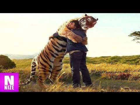 6 Unglaubliche Tiere, Die Menschen Das Leben Gerettet Haben
