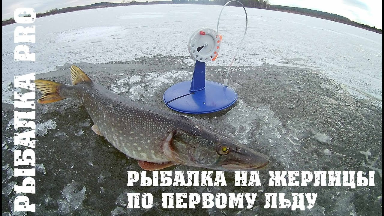 рыбалка на жерлицу на малых реках