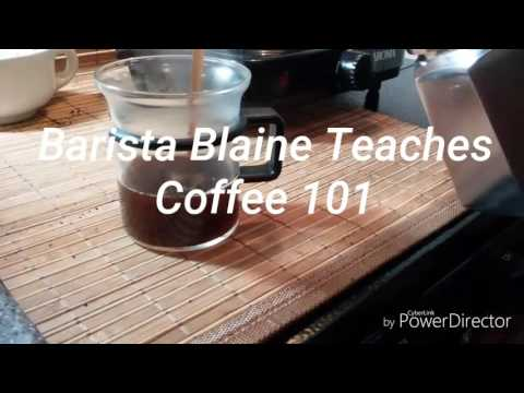 Barista Blaine coffee channel coming soon
