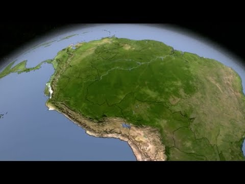 Timelapse: Devastating Deforestation