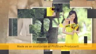 Leehibi Búpbê - Abum Nắng Vàng Chanh Year1 TV