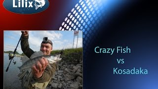 Crazy Fish vs Kosadaka