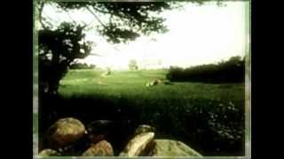 Дмитрий Прянов ft. Emilli - Дорога домой