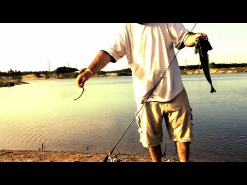 Fishing report - Catching a bass for TackleJunky81 Shaky Head 15ft Clear water (TeamRippnLipz1) Video