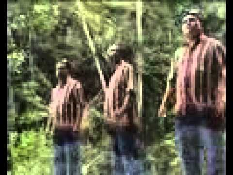 SONGON BABIAT (trio habinsaran)