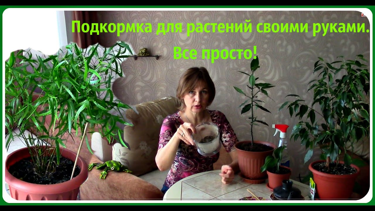 Гидропоника для цветов и овощей