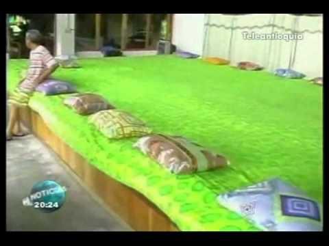 La cama m s grande youtube for Camas grandes