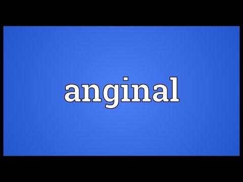 Header of anginal
