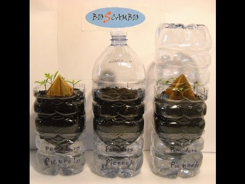 BIOsCAMBIO Nuove bottiglie semenzaio (the bottle sprouter method) 2014