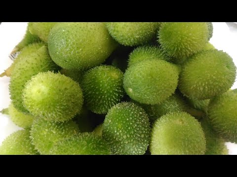 ककोड़ा की सब्जी। किकोड़े की सब्जी। Kakora Sabzi Recipe. Easiest Recipe. In Hindi.